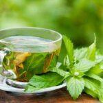 5-Healthy-Herbal-Teas-Peppermint-Tea