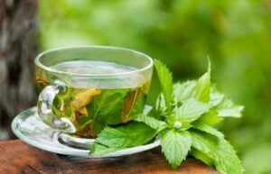 5-Healthy-Herbal-Teas-Peppermint-Tea