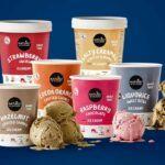 Top-5-Vegan-Ice Creams-Naturli'
